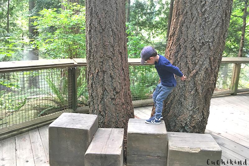 klettern in vancouver mit kindern